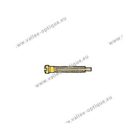 Screw with locking system by nylon thread 1.4 x 1.9 x 11 - gold