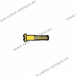 Screw in stainless steel 1.2 x 1.8 x 10.6 - gold