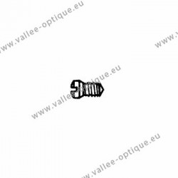 Stainless steel screw 1.4 x 1.9 x 2.7 - white