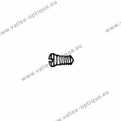 Stainless steel screw 1.4 x 1.9 x 3.1 - white