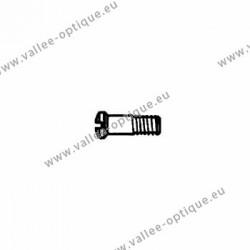 Vis en acier inoxydable 1.4 x 1.9 x 4.8 - blanc