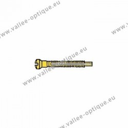 Screw with locking system by nylon thread 1.2 x 1.9 x 11 - gold