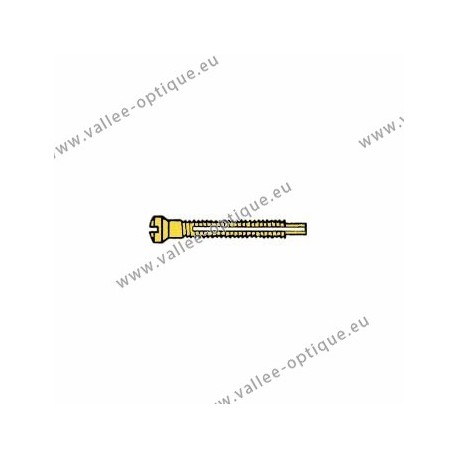 Screw with locking system by nylon thread 1.2 x 1.9 x 11 - gold