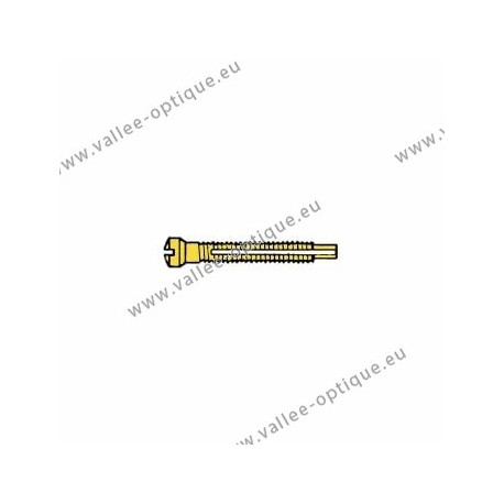 Screw with locking system by nylon thread 1.3 x 1.9 x 11 - gold